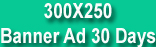 Featured Banner Ads
